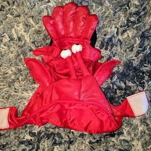 Dog lobster halloween costume